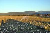 Didim Akbük'te 5 Dönüm İmarlı Çiftlik Arsası