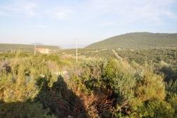 Didim Akbük Seyrantepe'de Satılık 600 m2 İmarlı Arsa