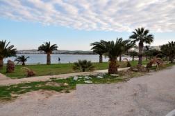 Didim Sedef Koyda Denize Çok Yakın Projeli Villa Arsası