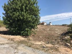 Didimde Satılık Seyrantepe Arsası
