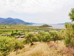 Milas Gölyaka'da Göl Manzaralı Satılık Zeytinlik 4600 m²