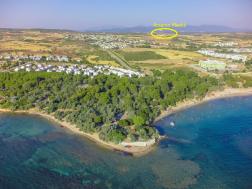 Didim Yalıköy'de Satılık Tarla, Zeytin Ağaçlı ve Tek Katlı Ev