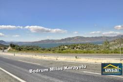 Satılık Zeytinlik Bodrum Milas Karayolu Göl Manzaralı