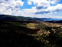 Kazıklı Köyünde Satılık 3200 m² Zeytinlik